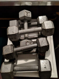 Assorted small exercise weights