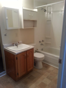 Nice, Bright 2 Bedroom Apartment in Massey Drive