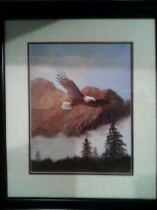 "22"" ×20"" picture of eagle"