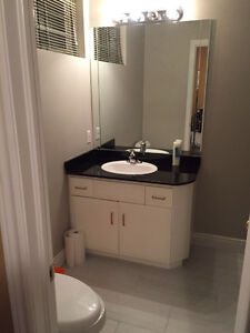 specious one bedroom in walk-out basement for rent Kitchener / Waterloo Kitchener Area image 9