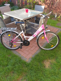 Ladies / Girls pink delta bike 24in wheels
