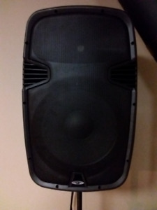 Acoustic Audio 1000 Watt Powered PA Speaker