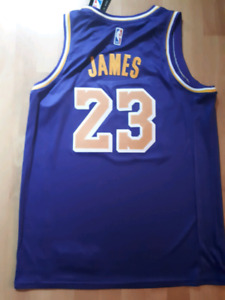 NBA/Nike Los Angeles Lakers Lebron James Jersey