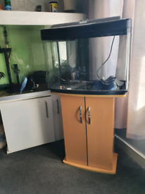 64ltr aquarium full tropical setup