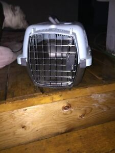 Cat carrier, kennel