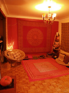Great spacious fully furnished room in Charming Charachter home