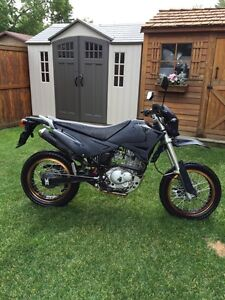 Pitster pro xtr200 (dr200 replica)