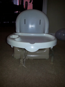 Beige booster with full straps and potty seat
