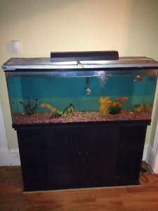 55 gallon with matching stand