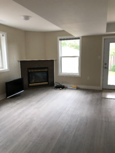 Beautiful,bright,  newly renovated walkout suite for rent !