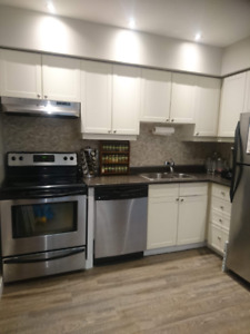 Large Furnished One Bedroom Condo Available in Downtown Hamilton