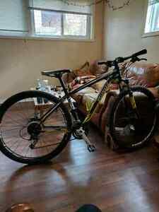 Specialized Rockhopper 29 mountain bike