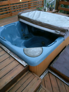 Hot tub - if you can take it, it's yours!