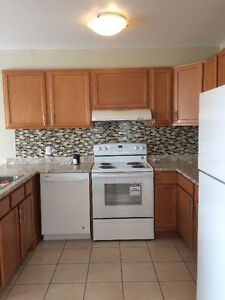 Beautiful, Spacious 4 Bedroom House in Kingston's North End