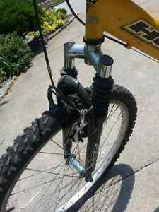 Huffy dual shock mountain bike Windsor Region Ontario image 3