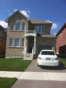 Detached 2 year new house for Rent-North End Peterborough