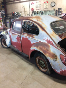 carsforsale calabasas for ca super beetle sale volkswagen bug com in