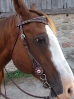 Blue crystal Weaver headstall
