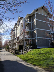 2 bed / 1 bath Apartment Macpherson South Burnaby location