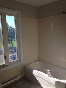 Appartement à louer Gatineau Ottawa / Gatineau Area image 3