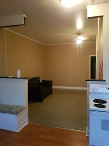 Large 1 bedroom Apt. ( Fleming Student)