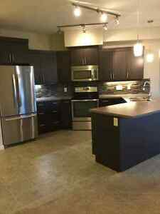 Lower Mission 2BD CONDO- avail NOW