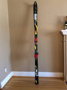 High Quality Great Condition Skis (comes with poles)
