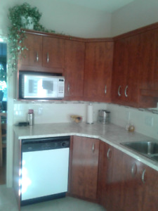 Kitchen counter top, sink w/tap, cabinets and stove fan