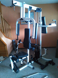 Northern Lights Exercise Machine, Plus sit up bench