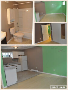 One Bedroom Apt for Rent - Immediate Occupancy Available