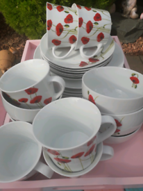 Plates, cups, bowls. Poppy