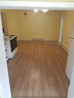 1 bedroom apartment available for April 15th or May 1st 2019