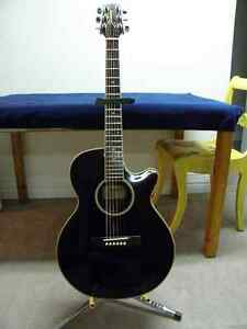 Takamine Acoustic Electric TS 90C-DW Thinline Artist Series