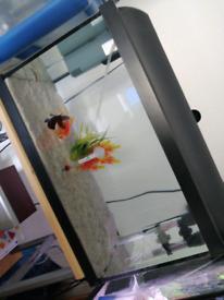 40L fish tank with External filter, heater etc...