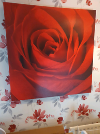 2 x rose canvas for sale