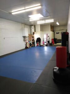 Gym / Training space for rent