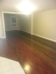 Downtown Whitby Nice and clean large 2 bedroom apt for rent