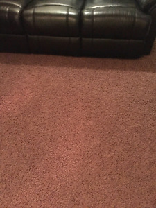 Two Brown Shag Carpet Reminents