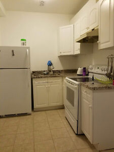 Available ALL INCLUSIVE 1 bedroom lower unit Cambridge Kitchener Area image 5