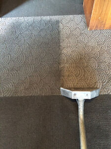 Carpet Cleaning, Tile & Grout Cleaning, Upholstery Cleaning Oakville / Halton Region Toronto (GTA) image 3
