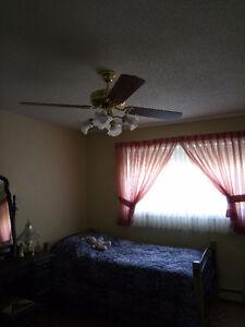 """52"""" Ceiling Fan"""