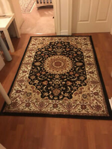 Traditional Persian Rug - Brand New - Never Used