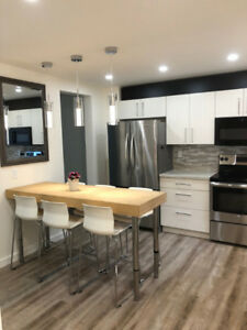 Completely Renovated - Two Bedroom Condo Niagara Falls