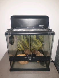 vivarium tank with light