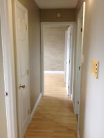 Quiet, Warm, Cozy Brick Apartment! New Paint, Heat/Hot Wtr Inc