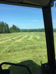 Hay for sale in pictou county