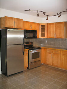 Newly renovated 5 BR + 2 BA upper floor of a beautiful house