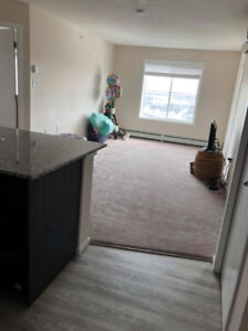 2 bedroom 2 bathroom appartment with utilities included