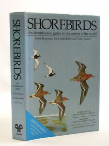 SHOREBIRDS IDENTIFICATION GUIDE WADERS OF THE WORLD Bird Book