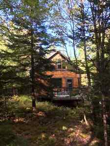 Cozy Cottage For Sale - Drilled well & septic